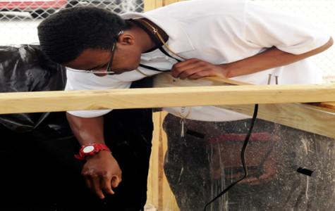 Students engineer hydroponics lab