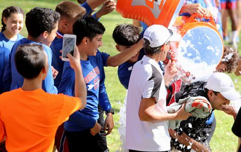 Cross country team puts in necessary work to sweep district