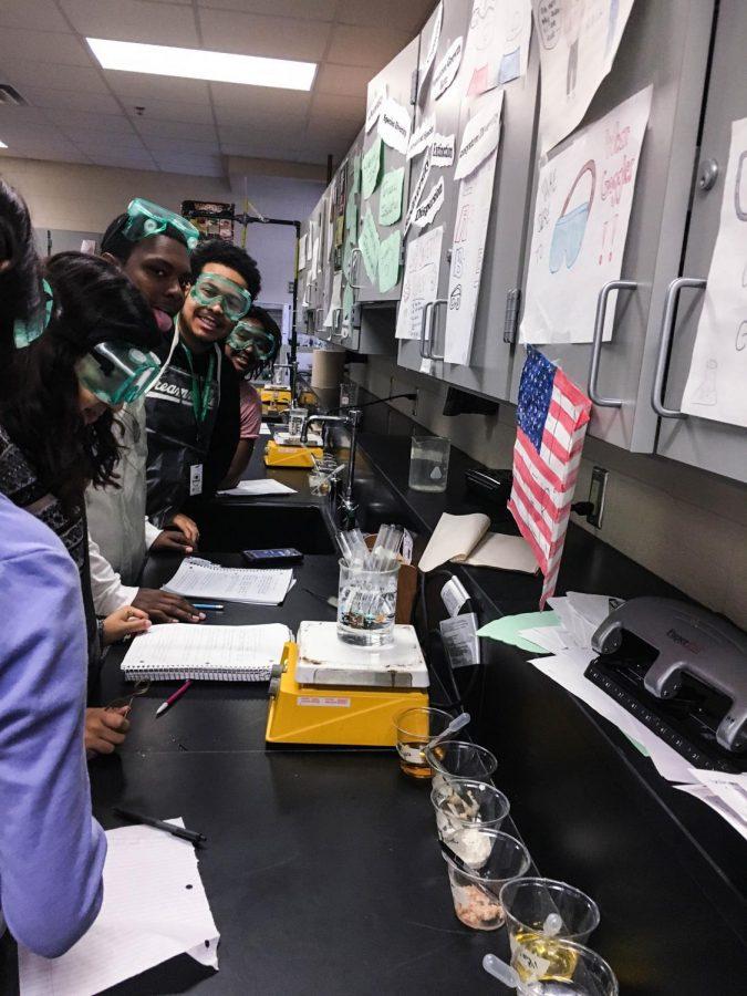 Biology+Kids+in+Action+in+Ms.+Hewitt%27s+class