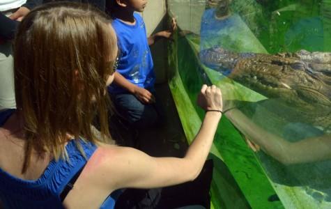 Animal Management Zoo Trip