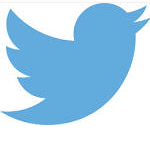 The twitter logo (screen shotted)