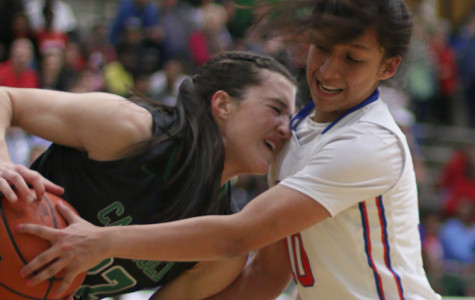Alvarez breaks past height barrier to lead Pantherettes in defensive steals