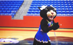 Lady Panther Dance Video